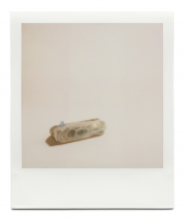 http://www.robinwaart.nl/files/gimgs/th-85_85_046-izone-110329-2240-hrs-wamberal-central-coast-nsw-au-1999-polaroid-i-zone-instant-pocket-camera-transparent-and-blue-1999-2265-aud.png