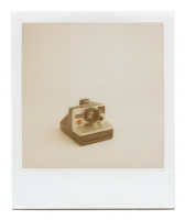 http://www.robinwaart.nl/files/gimgs/th-85_85_069-pronto-110415-0254-hrs-duffield-va-us-1976-1977-polaroid-land-camera-pronto-b-gold-text-on-control-ring-1976-1977-2999-usd.png