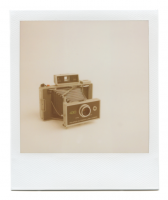http://www.robinwaart.nl/files/gimgs/th-85_85_098-automatic-110703-1130-hrs-amsterdam-nl-1971-1977-polaroid-automatic-land-camera-430-1971-1977-2000-eur.png