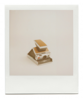 http://www.robinwaart.nl/files/gimgs/th-85_85_112-sx-110719-1554-hrs-norderstedt-de-1977-1986-polaroid-sx-70-land-camera-alpha-1-silver-brown-leather-1977-1986-6838-eur.png